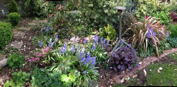 Saturday in the garden