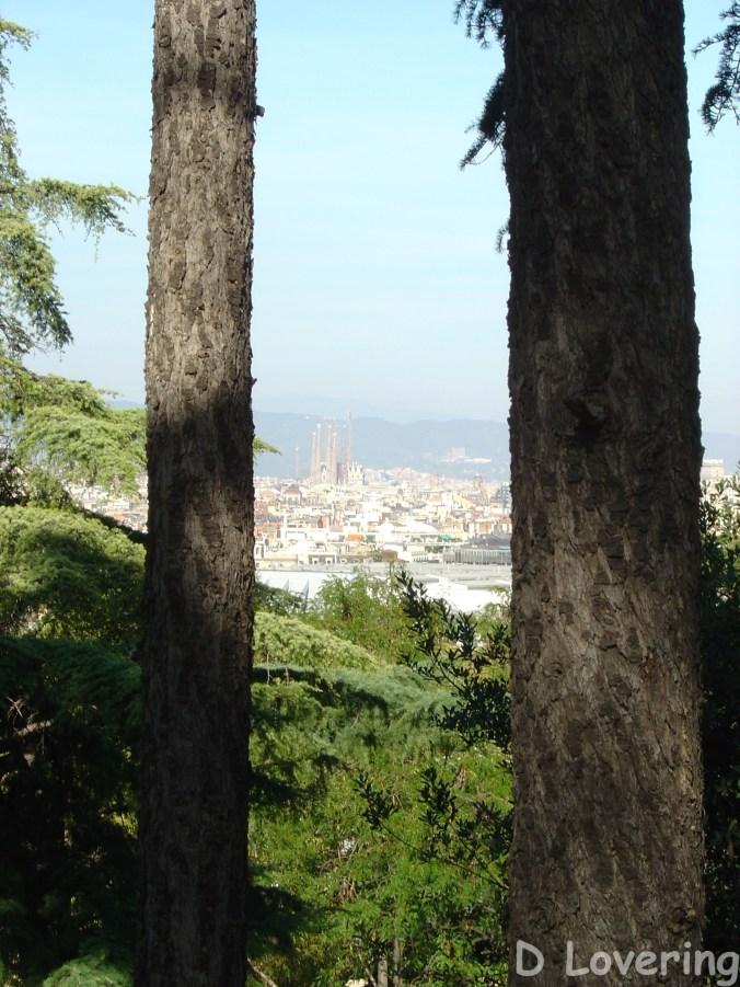 Looking at Barcelona